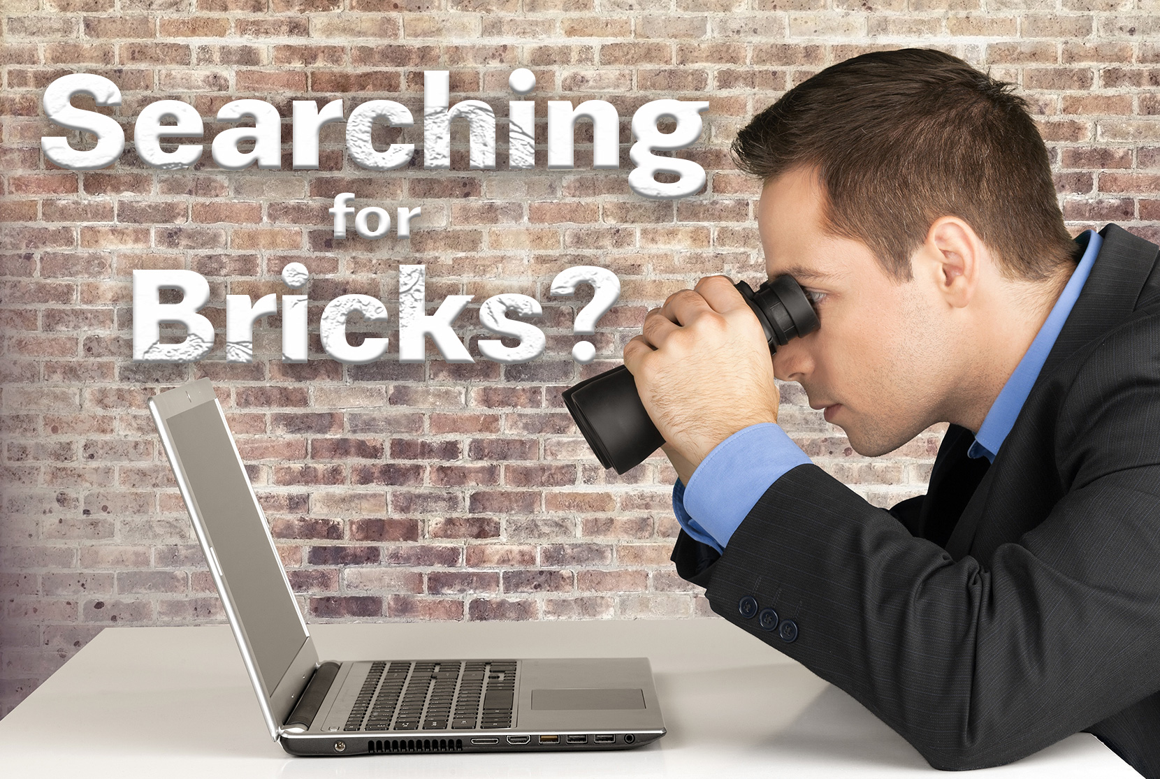 Are you looking for bricks?